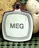 Spoilt Rotten Pets ENGRAVED Chrome Square Framed Pet Identity Dog Tag, Supplied With Split Ring & Engraved Both Sides