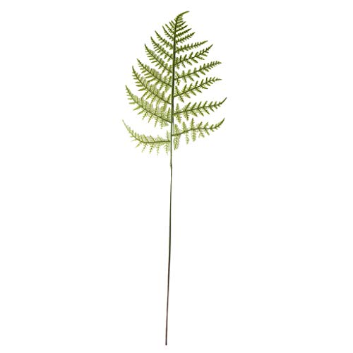(Dartphew 1PC Artificial Boston Fern Bush Plant Faux Leaves Green Plants for Home Decor Artificial Fern Leaf Plant Floral Plant Tree Branch Green Wedding Home Decor - 30 x)