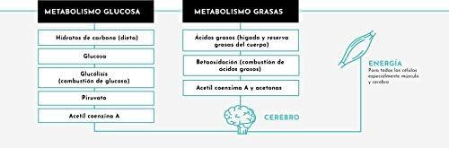SIKETO - Minerales y vitaminas, Magnesio, sodio, potasio y vitaminas C, B1, B6, B12, Caja con 20 Sticks, Complemento alimenticio para dieta cetogénica ...