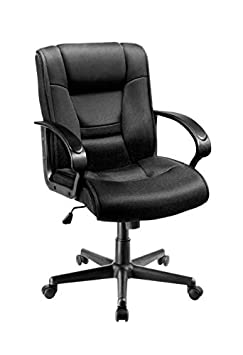 Brenton Studio Ruzzi Mesh Mid-Back Chair, Black