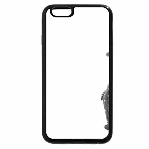 iPhone 6S Plus Case, iPhone 6 Plus Case (Black & White) - Strawberry