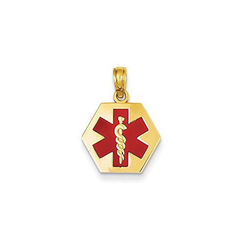 14k Yellow Gold Polished Textured back Not engraveable Enameled Medical Disk Pendant