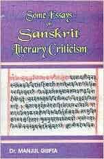 essay on literary criticism