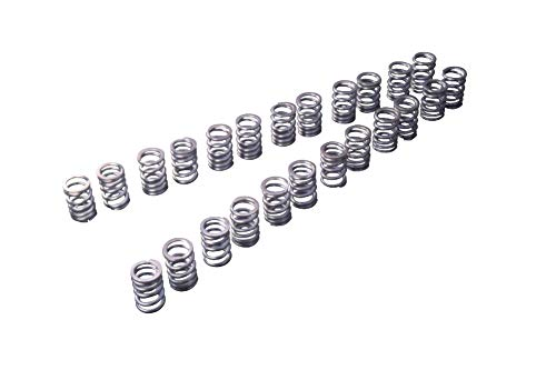 Tomei 173001 Valve Springs Set KIT Type A Nissan Skyline GT-R RB26DETT ()