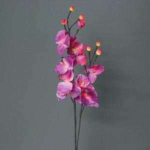 RQ16 Lighted Pink Orchids with 16 Bulbs, 31-Inch Tall (Enchanting Orchid)