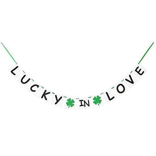 Irish Wedding Banner | Lucky In Love Banner | St. Patrick's Day Banner Garland | Shamrock Banner | St. Patricks Day Party Decorations | Irish Party (St Patricks Day Wedding)