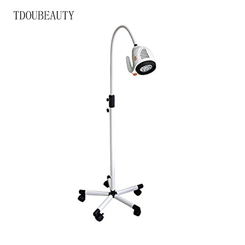 2017 The World Popular Style TDOUBEAUTY-KD-202B-8 Dental Inspection Light Movable 21W LED Inspection Lamp by TDOUBEAUTY