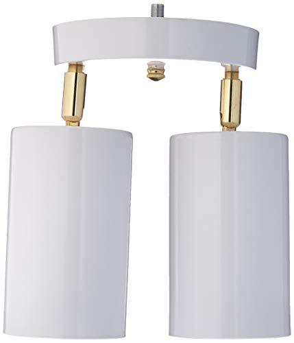 2 Spotlight Directional - Westinghouse Lighting 6668200 Two Light Multi-Directional Ceiling Fixture