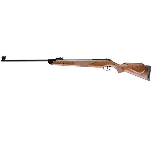RWS Model 50 Magnum .22 Caliber Air Rifle