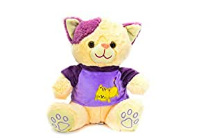 Stuffed Teddy Bear Toys with Colorful Shirts