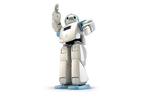 hovis-eco-plus-20-dof-humanoid-robot