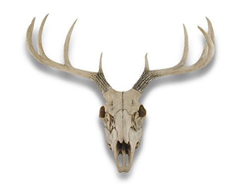 Things2Die4 10 Point Buck Deer Skull Bust Wall Hanging