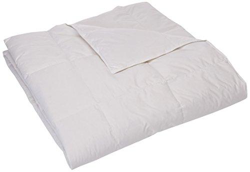 Sleep Philosophy True North Level 1 Down Comforter, King (Comforter Level Down)
