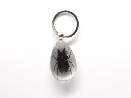 Lucite Treasures Black Stag Beetle Keychain ()