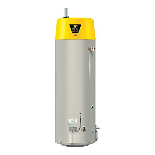 - AO Smith BTX-80 Tank Type Water Heater with Commercial Natural Gas