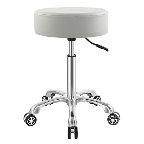 EasyLife185 Professional Swivel Rolling Stool Adjustable Height Hydraulic Stool with Wheels for Clinic Dentist Spa Massage Salons Studio (Gray)