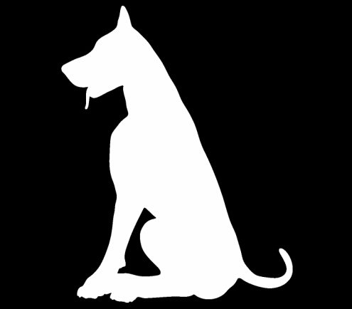 - CCI Great Dane Dog Silhouette Decal Vinyl Sticker|Cars Trucks Vans Walls Laptop| WHITE |5.5 x 4.25 in|CCI541