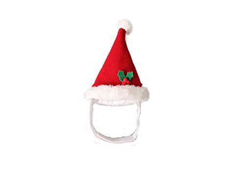 Baby Guinea Pig Costumes (Mummumi Dog Holiday and Christmas Hat, Puppy Dog Santa Hat Costume Christmas Collection Pet Accessory For Cat Rabbit Hamster Guinea Pig, Small, Red (C))