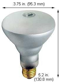 Best Halogen Bulbs 65BR30FL/SS 130V (Case of 10)