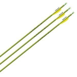 The Best Easton Genesis Ii Arrows