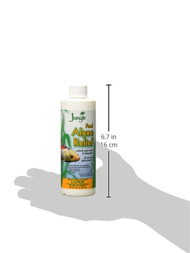 [해외]정글 PL720-8W 연못 조류 릴리프, 8 온스, 236 ml/Jungle PL720-8W Pond Algae Relief, 8-Ounce, 236-ml