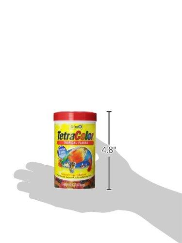 046798771616 - Tetra 77161 TetraColor Tropical Flakes, 2.20-Ounce, 375 ml carousel main 4