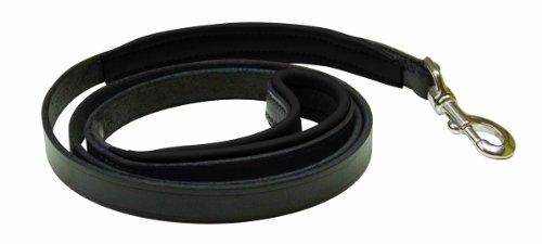 Perri's Padded Leather Dog Leash, Black/Black, 5-Feet