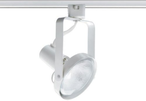 White Gimbal Track Head - Juno Lighting T689WH Trac-Master Front Lamping Gimbal Line Voltage PAR30 Lampholder, White