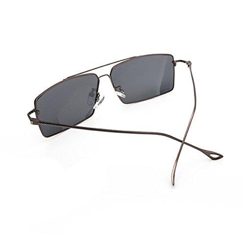 grenouille de Pilote soleil de de Voyager miroir voler de lunettes polarisés Convient lunettes Sports plein air soleil de polarisée Hommes soleil soleil pour Lunettes polarisées de Verres Lunettes de Z8qXwdZ