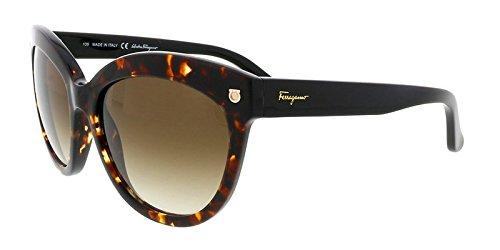 Salvatore Ferragamo Sunglasses SF675S 214 Tortoise 55 18 ()