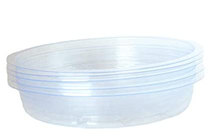 180 & Amazon.com : 5 Pack of 9 Inch Plant Saucers Clear Plastic ...