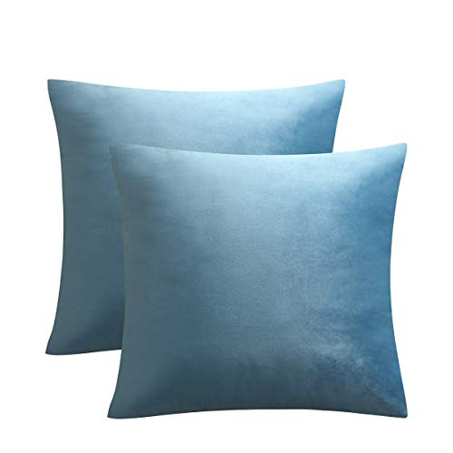 JUSPURBET Pack of 2,Velvet Decorative Throw Pillows Covers Cases for Couch Bed Sofa,Soild Color Soft Pillowcases,26x26 Inches,Light Blue