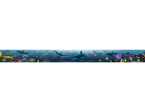 (Teacher Created Resources Ocean Life Straight Border Trim from Wyland, Multi Color (4375))