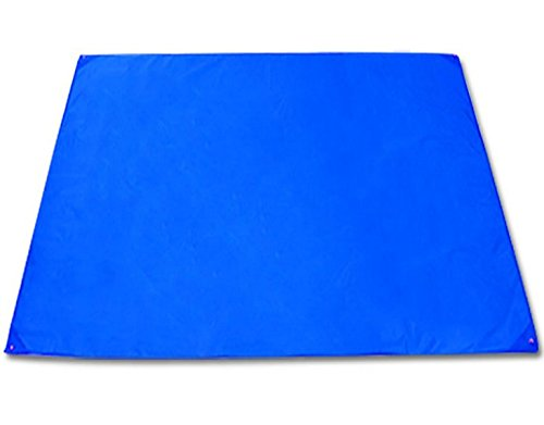 Safari Magnetic Activity Table (BlueSunshine Portable Beach Blanket, Picnic Blanket, Camping Tarp,Tent Footprint, Waterproof Oxford Mat for Outdoor Camping Beach Hiking Backpacking Traveling, Lightweight (Blue, 83