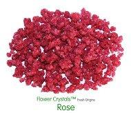 Fresh Origins 185ROSE4OZ12 Flower Crystals Rose44; 4 oz. - 6 Pack