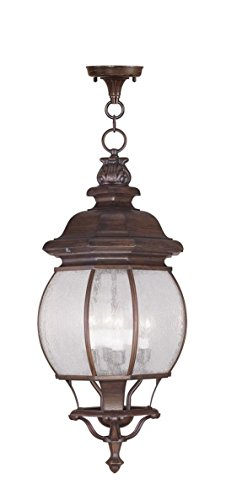 Livex Lighting 7910-58 Frontenac 4 Light Outdoor Chain Hang, Imperial Bronze