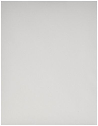 Pentax Letter Size Paper, 100 sheets (PTX 201960) Pentax Thermal