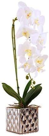 Imiee Artificial Arrangement with Vase Decorative Orchid Flower Bonsai