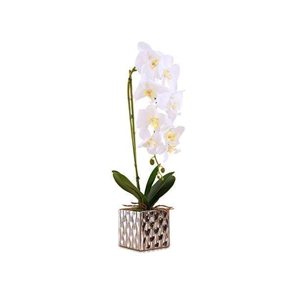 IMIEE Artificial Arrangement with Vase Decorative Orchid Flower Bonsai