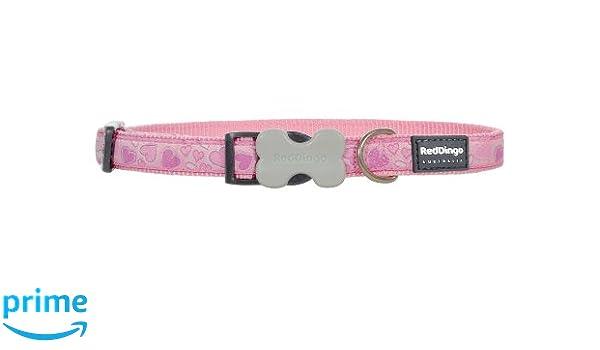 Disabled-Signs.com Red Dingo - Collar para Perro, diseño Liso ...