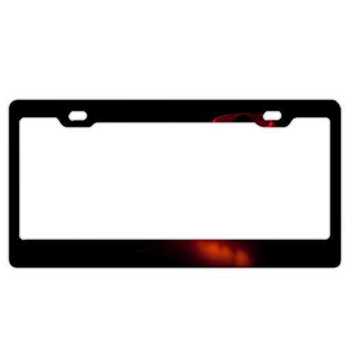 Elvira Jasper Halloween Pumpkin Dark Autumn Car License Plate Frame,Alumina License Plate Covers Free Screws Fasteners Screw Caps -