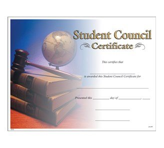 TOYSnPLAY Member of Student Council -