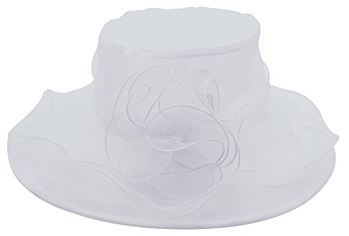 Women's Lady's Wide Brim Hat Fashion Gauze Hat Tea Party Hat, White