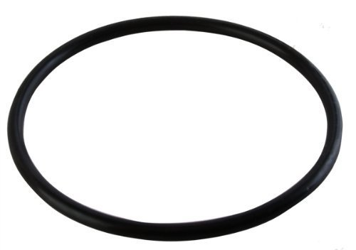(1 X R172009 Cap Gasket for Rainbow Chlorinator by Pentair)