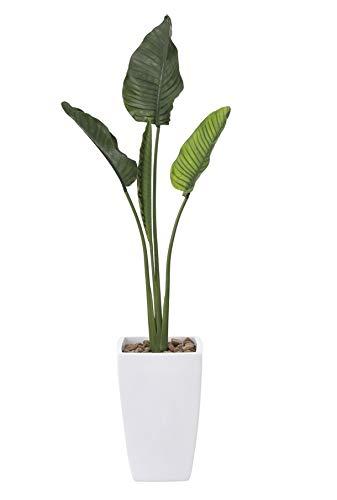 オフィスのエントランス廊下や、お店のアクセントに光触媒「V-CAT」を使用人工観葉植物●光触媒 光の楽園 オーガスタ1.75m B07HF6J7VR