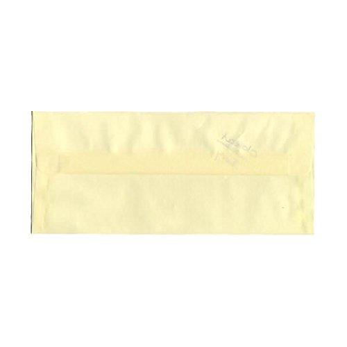JAM PAPER #10 Business Translucent Vellum Envelopes - 4 1/8 x 9 1/2 - Ivory - 25/Pack Blue Translucent Vellum Envelope