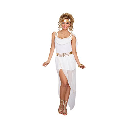 Dreamgirl Women's It's Greek to Me Costume, White/Gold, (Venus Sexy Costumes)