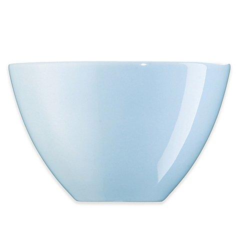 rosenthal-arzberg-profi-65-inch-cereal-bowl-in-sky