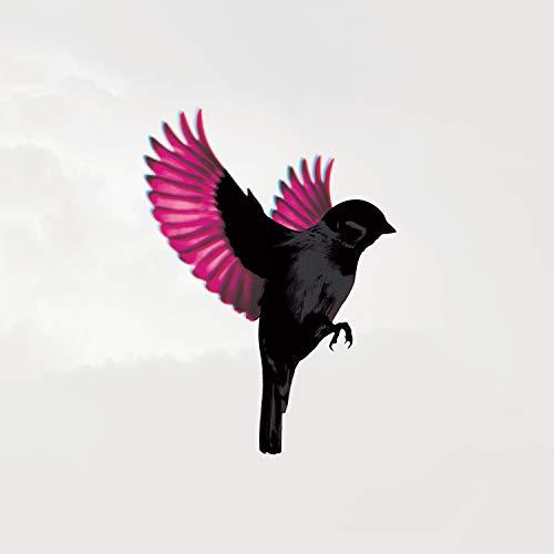 Sparrow ()