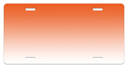 - Ambesonne Ombre License Plate, Scorching Sunset in The Hot Desert Inspired Dusk Orange Ombre Digital Art Design Print, High Gloss Aluminum Novelty Plate, 5.88 L X 11.88 W Inches, Orange